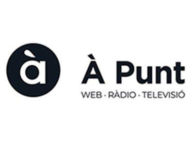 a punt radio